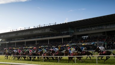 Leopardstown: the scene for Sunday's racing action in Ireland