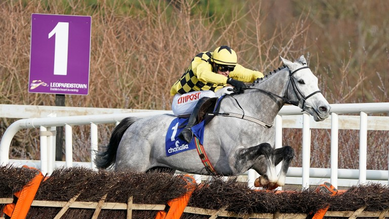 Asterion Forlonge: the only Willie Mullins-trained winner of the Chanelle Pharma to run in the Supreme and not win