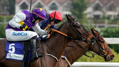 DUBLIN, IRELAND - FEBRUARY 01: Bryan Cooper riding Latest Exhibition (L, purple/yellow) clear the last to win The Nathaniel Lacy & Partners Solicitors '50,000 Cheltenham Bonus For Stable Staff' Novice Hurdle  during the Dublin Racing Festival at Leopardst