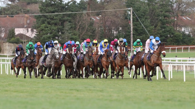 Leopardstown: will not introduce racing on the Friday