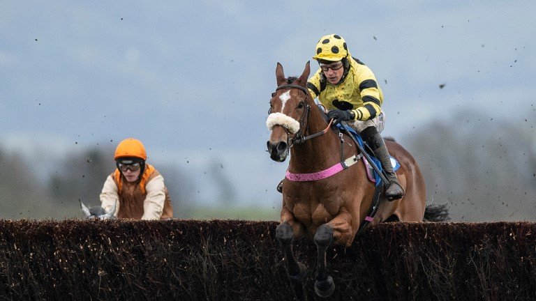 Town Parks: a winner over course and distance for Kerry Lee on his most recent outing