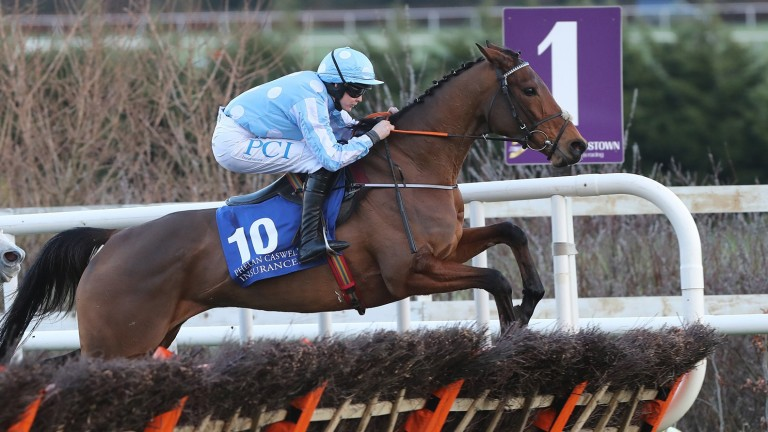 Honeysuckle: entered for the Mares' Hurdle and Champion Hurdle