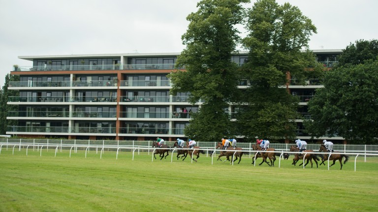 Newbury: hosts a nine-race card this afternoon