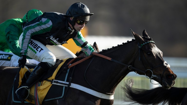 Altior: could make his seasonal reappearance in the Desert Orchid Chase