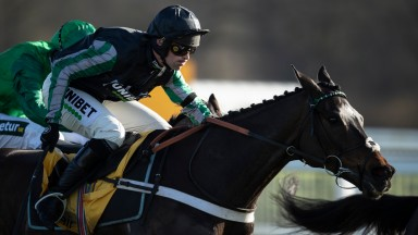 Altior (Nico de Boinville jumps the last fence and wins the Game Spirit Chase from Sceau Royal Newbury 8.2.20 Pic: Edward Whitaker