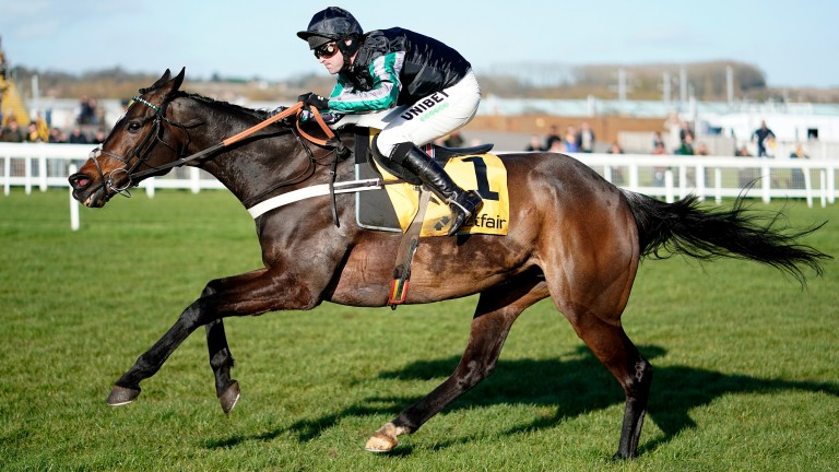 Altior: 2-1 for Champion Chase glory