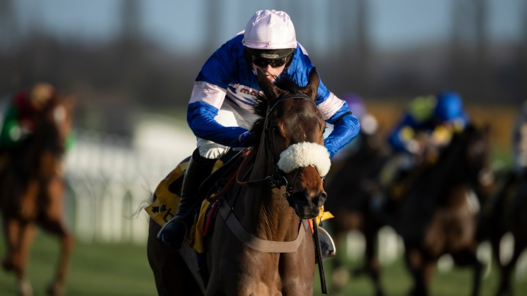 Pic D'Orhy: winner of the Grade 2 Betfair Hurdle in February