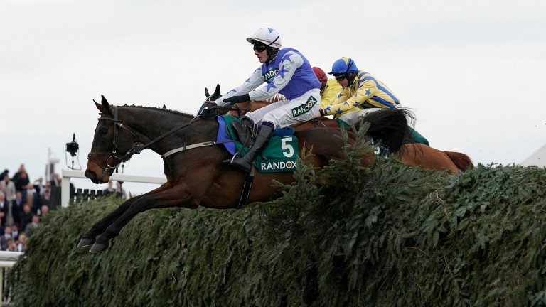Cadmium: won the Topham Chase over the Grand National course last season