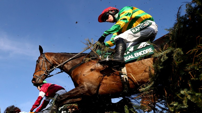 Regal Encore: the 13-year-old has won four times at Ascot