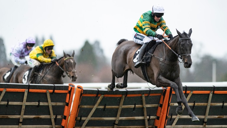 Sporting John: made it three from three over hurdles when scoring at Ascot, a month before Cheltenham