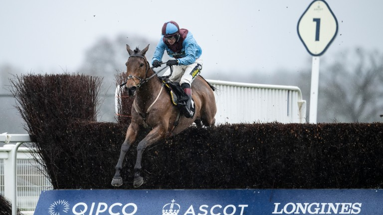 Ballyoptic and Sam Twiston-Davies clear the last en route to victory in the Swinley Chase at Ascot