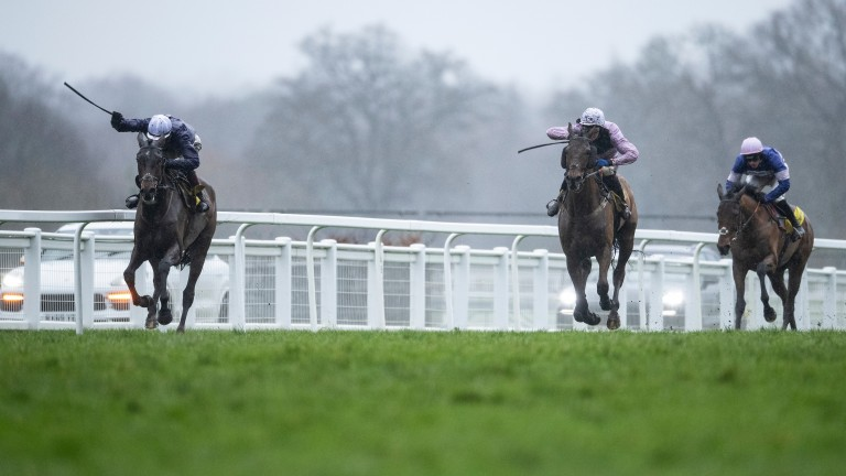 Cyrname (right): well beaten before a final fence fall in the Ascot Chase