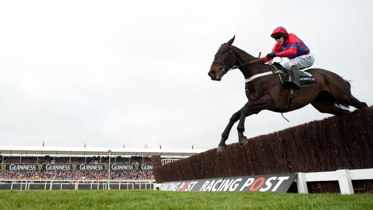 Take off: Sprinter Sacre starred in the 2012 Arkle
