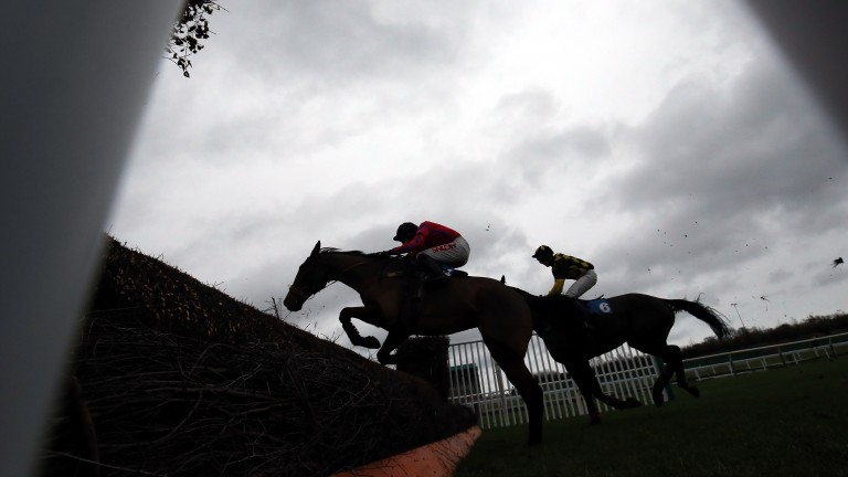 Newcastle: track's Eider Chase will be live on ITV4