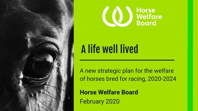 "The ""A Life Well Lived"" report was delivered by the Horse Welfare Board in February 2020"