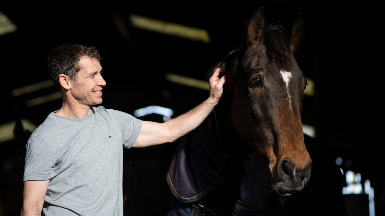 Looks Like Trouble: Richard Johnson named his family pet after the 2000 Cheltenham Gold Cup winner