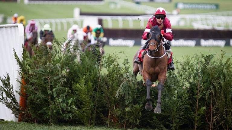 Tiger Roll is Mr Dependable in the Cross-Country Chase