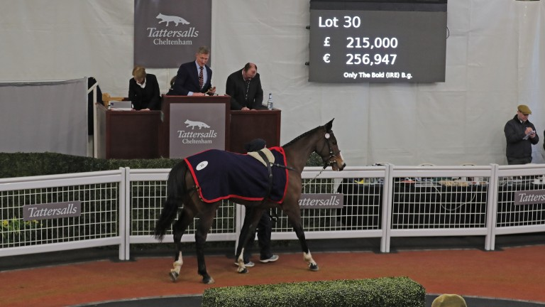 A Bold Play Secures 163 215 000 Top Lot At Tattersalls