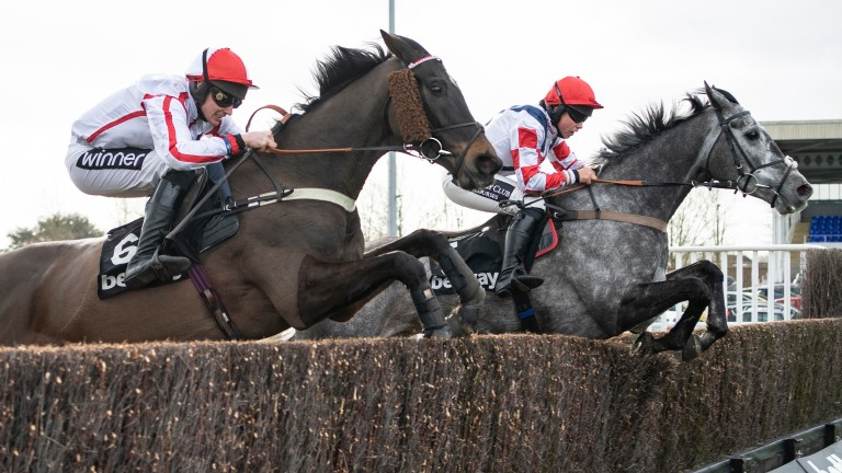 Southfield Stone (right): returns to action following a promising novice chase campaign