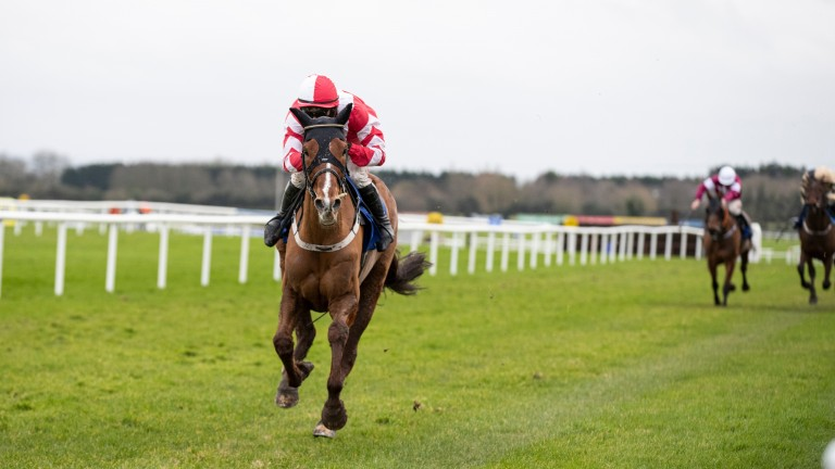 Acapella Bourgeois: impressive when winning the Grade 3 Bobbyjo Chase by 15 lengths on his final start of 2020