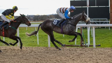 Cool Possibility (Conor O'Farrell), winning his jumpers' bumper at Newcastle three days ago