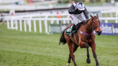 RELEGATE Ridden by Ms K Walsh wins at CHELTENHAM  14/3/18Photograph by Grossick Racing Photography