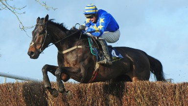 Mark O'Hare: the long-serving rider has partnered a point-to-point winner in four decades