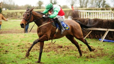 Sovereign Gold runs out an eight-length winner over proven performers at Kildorrery