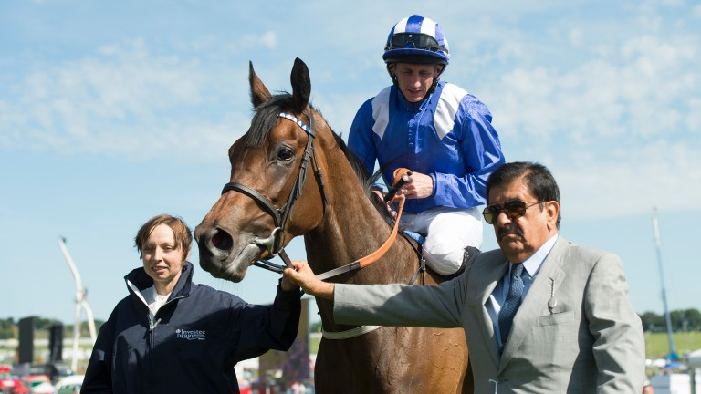 Taghrooda being led in by Sheikh Hamdan after winning the 2014 Epsom Oaks