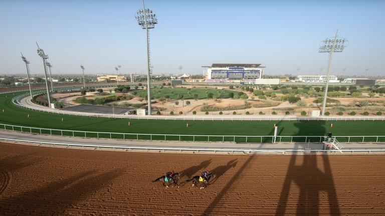 King Abdulaziz racecourse: first day of big meeting on Friday