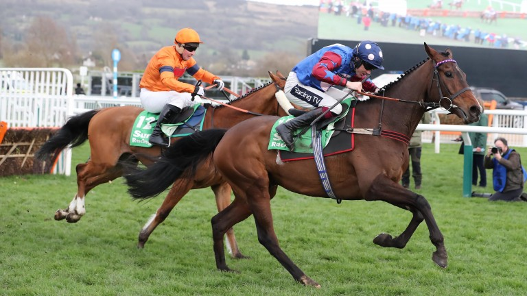 Paisley Park: winner of the Stayers' Hurdle in 2019 will now head straight to Cheltenham