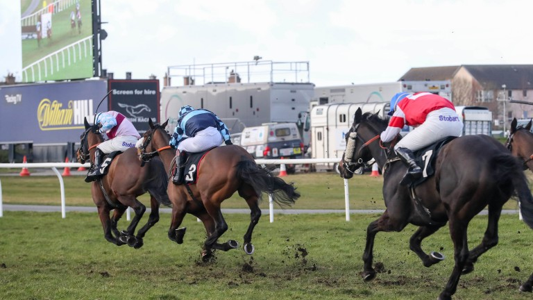 MADE FOR YOU Ridden by Richard Johnson wins at Musselburgh 27/2/20Photograph by Grossick Racing Photography 0771 046 1723