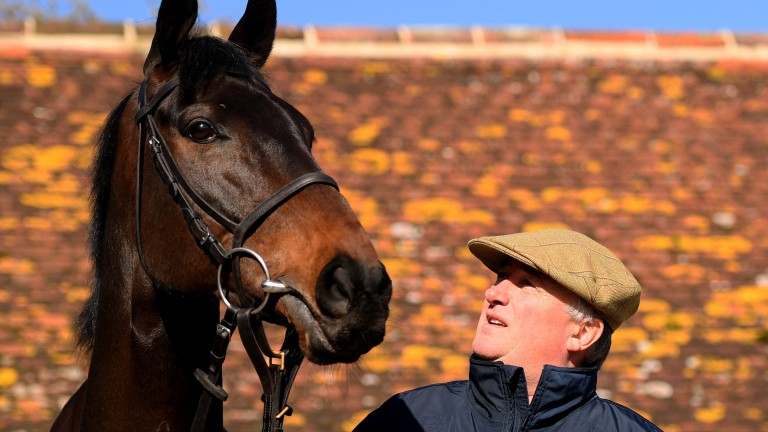 Clan Des Obeaux: leading player in this year's Cheltenham Gold Cup