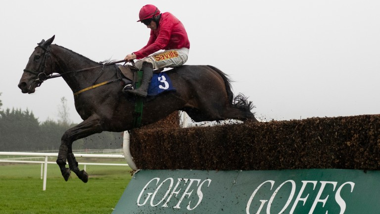 Snow Falcon and Sean Flanagan have teamed up to enjoy six successes together