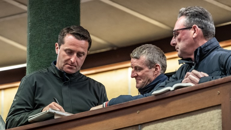 Ross Doyle (left), Mick Murphy and Harold Kirk (right) at the Goffs Land Rover Sale
