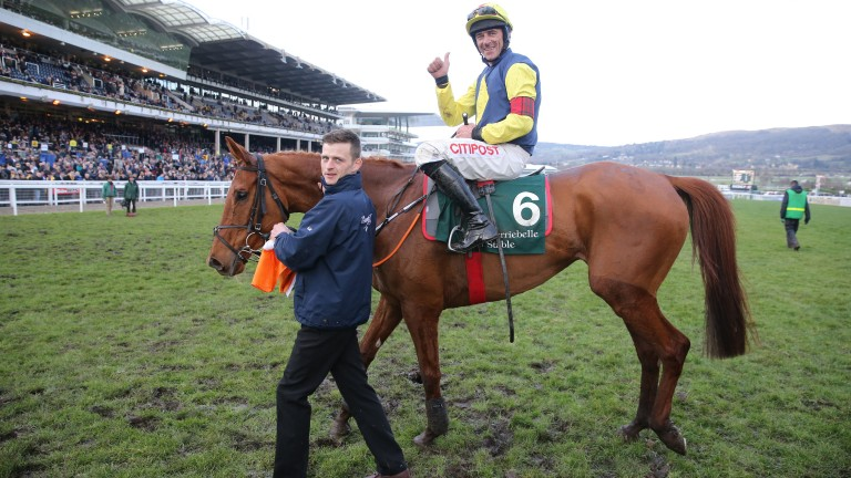 The Storyteller: winner of the 2018 Brown Advisory & Merriebelle Stable Plate Handicap Chase is a leading fancy for the Pertemps Final having finished sixth in a qualifier at Leopardstown