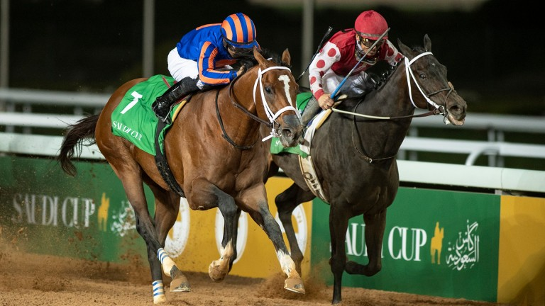 Midnight Bisou (right): finished second to Maximum Security in the Saudi Cup