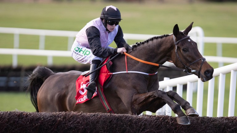 Chris's Dream looks a live outsider for the Henry de Bromhead stable in the Gold Cup