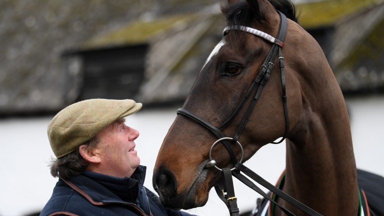 Santini: Gold Cup second is back in action at Aintree