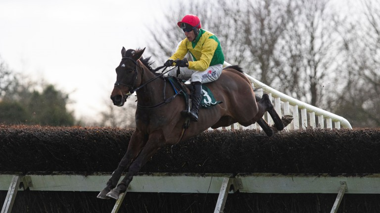 Sizing Pottsie and Robbie Power on their way to winning the Flyingbolt Novice Chase at Navan earlier this month