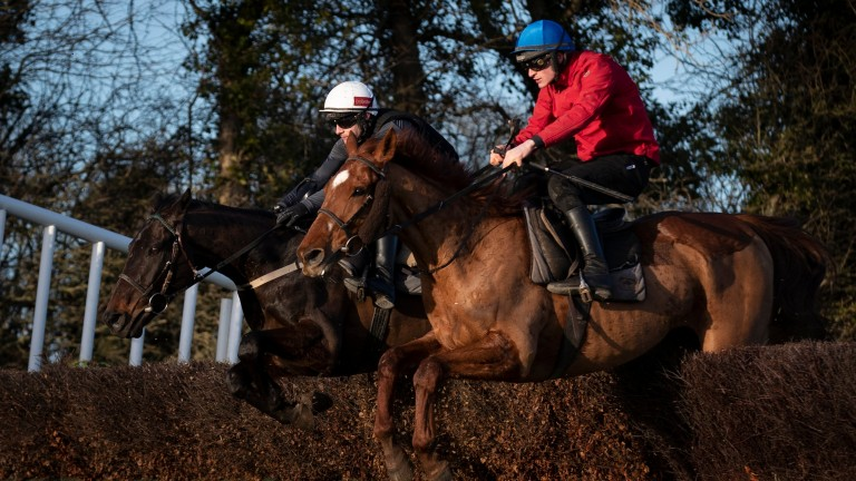 Al Boum Photo (Paul Townend, white cap) jumps a fence alongside Melon (Danny Mullins) in a schooling session after racing at Navan on Tuesday