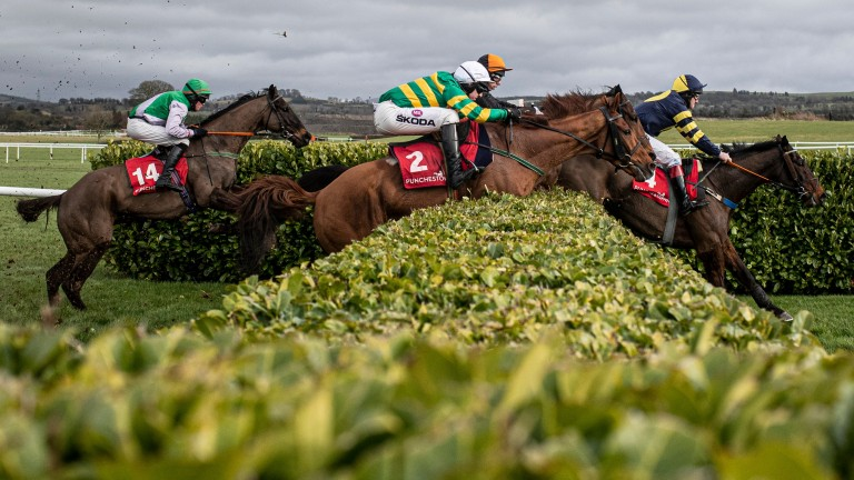 Yanworth takes one of the obstacles on the banks course at Punchestown