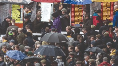 The packed betting ring at last year's Cheltenham Festival