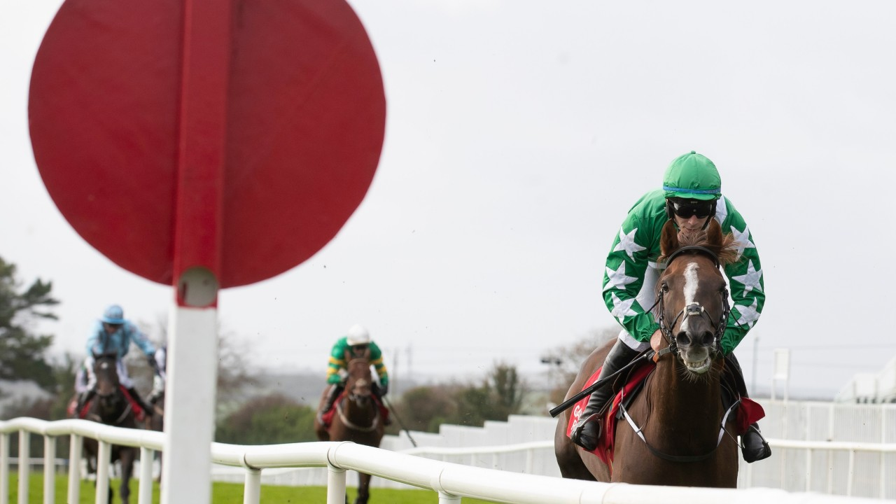 Four-horse trainer ready to take on the big names in County Hurdle