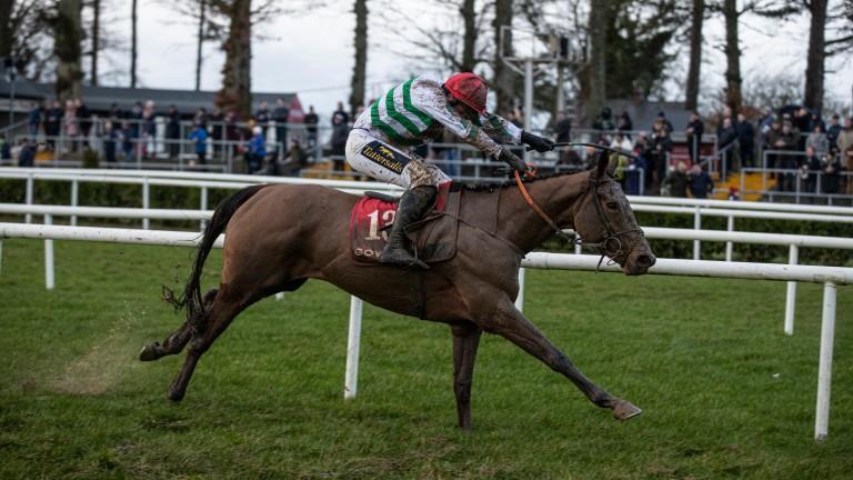 Jamie Codd partners Queens Brook to victory at Gowran