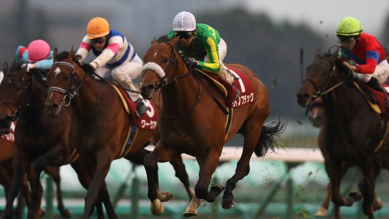 Satono Flag (green and yellow) and Yutaka Take land the odds