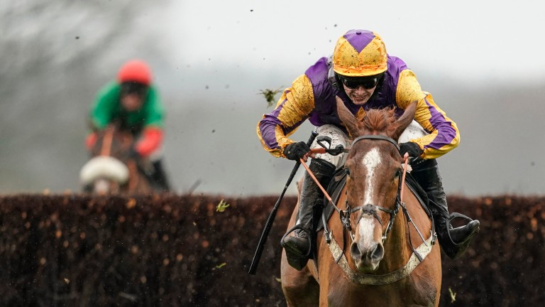 Copperhead was a decisive winner of the RSA Chase