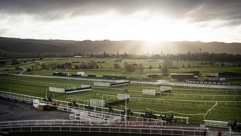 The sun rises over Cheltenham as Gordon Elliott's string strolls to the gallops