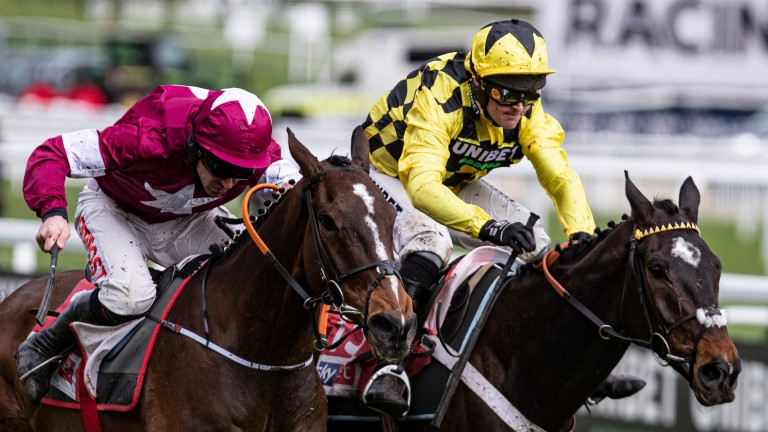 Shishkin (right): returned at 6-1 following a big drift ahead of last year's Supreme Novices'