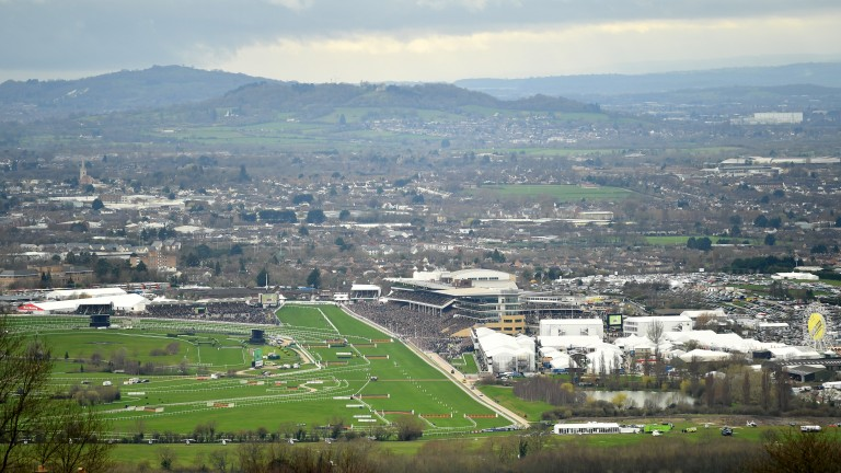 Plans are being considered to extend the Cheltenham Festival in March to five days